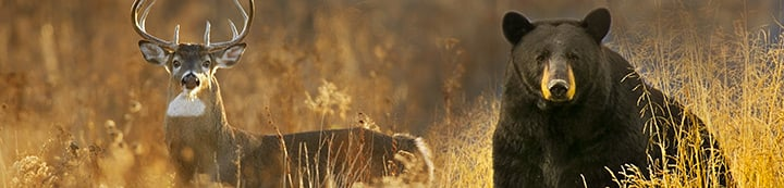 Manitoba Hunting Forums banner