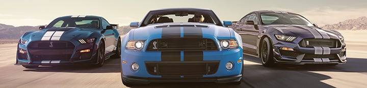 Mustang Evolution Forum banner