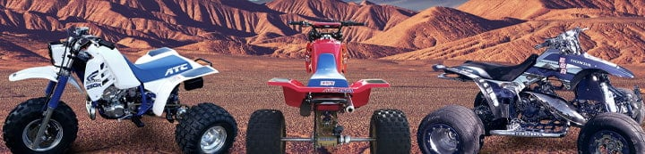 Honda TRX250R Forums banner