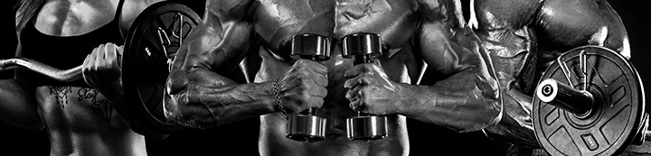 UK-Muscle.co.uk Forum banner