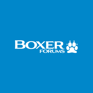 Community avatar for Boxer Breed Dog Forums