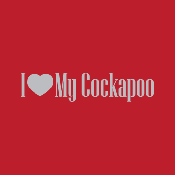 Community avatar for Cockapoo Forums