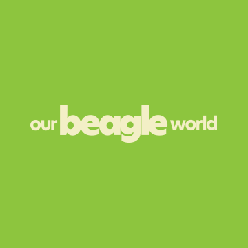 Community avatar for Our Beagle World Forums