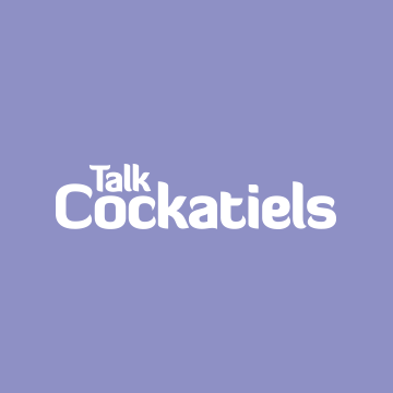 Community avatar for Talk Cockatiels Forum