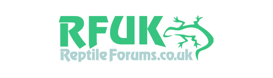 reptileforums.co.uk