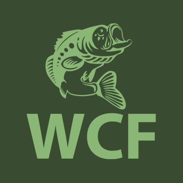 www.windycityfishing.com
